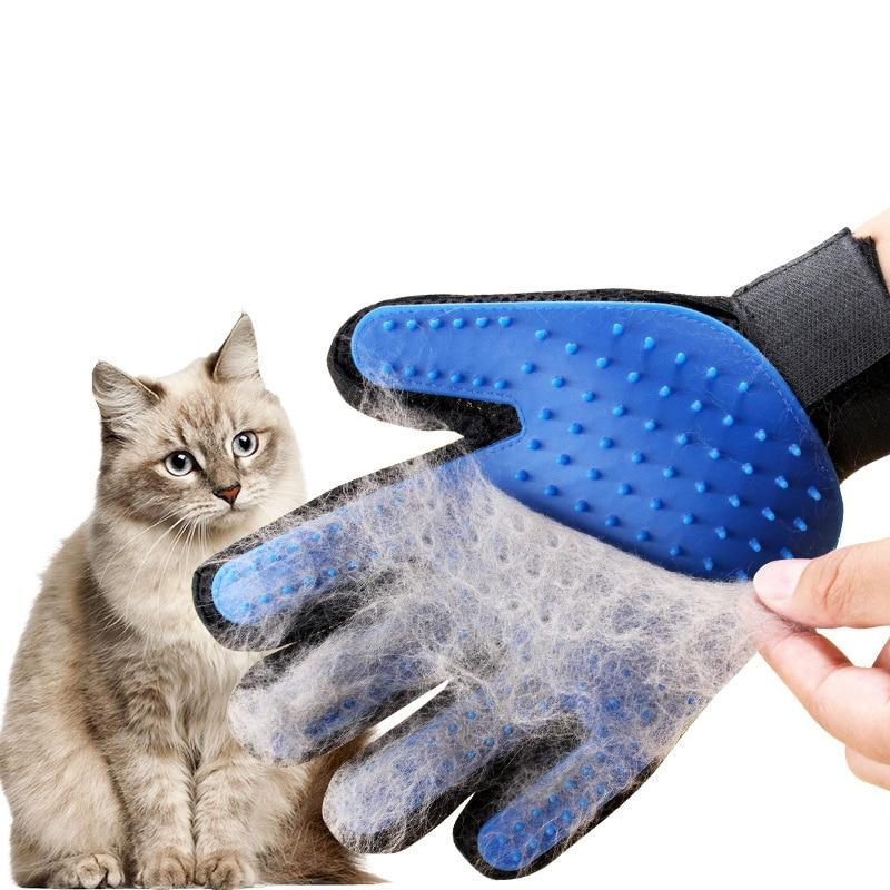 dropshipping pet toys accessories